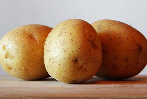 [COOKING의 과학] 땅 속의 사과, 감자!