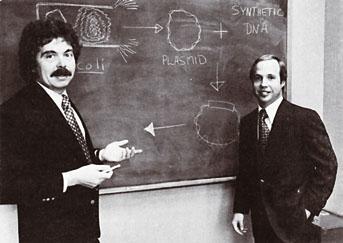 30대 후반인 보이어 교수(왼쪽)와 20대 후반인 스완슨은 제넨텍을 설립해 재조합DNA 기술로 만든 인슐린 프로젝트에 뛰어들었다. - 스탠퍼드대 제공