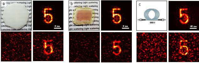 연구진이 촬영한 사진. 생체조직과 닭가슴살, 광섬유를 통과하면서 흩어진 빛을 시간역행 거울을 이용해 원래 이미지로 되살려 냈다. - KAIST 제공