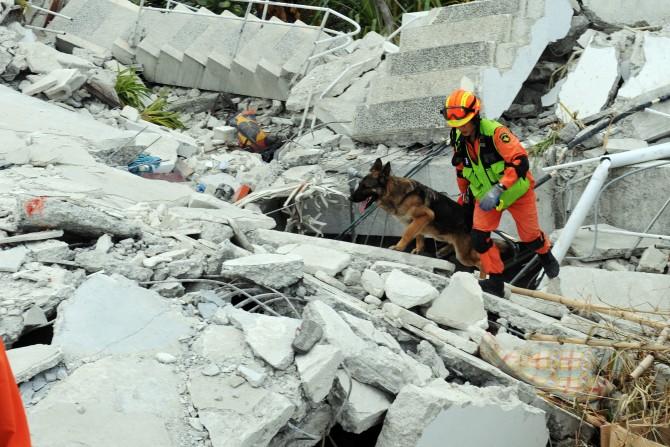 지난 2010년 아이티 지진 당시 파견된 한국 중앙 119 대원이 수색활동을 하고 있다. - 위키미디어 제공