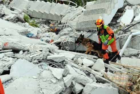 또 대지진, 우리나라는 대지진에서 안전한가
