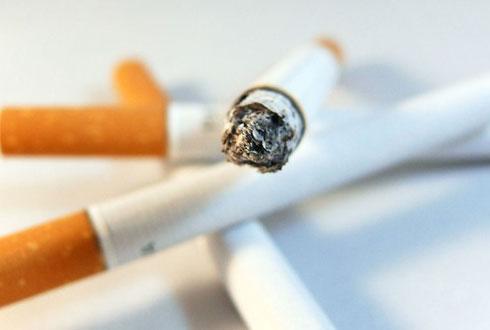 담배, 인류최고의 '기호품'인가 '마약'인가