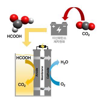 이산화탄소 재자원화를 통해 얻은 개미산(HCOOH)의 산화반응을 활용한 연료전지의 개념도. - GIST 제공