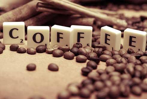아라비카 커피 죽이는 '커피 녹병' 어떻게 잡을까