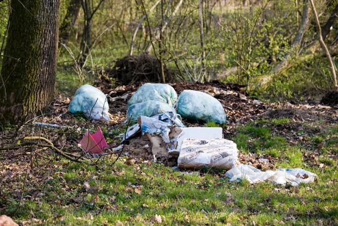 휴가지에 널린 쓰레기들 - GIB 제공