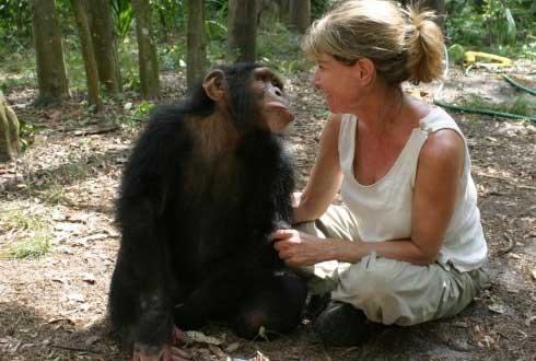 침팬지가 인간의 학습능력을 뛰어넘을 수 없는 이유