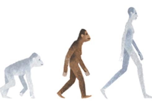 오스트랄로피테쿠스 발견 41주년, 비틀즈가 만들어준 이름 '루시'