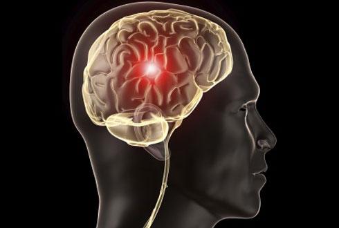 움직임을 학습하고 기억하는 뇌 부위는