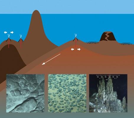 심해저 광물자원 개발