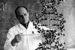 [2015년 사라진 과학계 별들](8)왼손잡이 DNA 존재를 밝힌 생물학자 알렉산더 리치