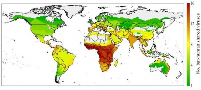 각 지역에 서식하고 있는 박쥐가 가지고 있는 인수공통 바이러스의 수를 색으로 표시했다. 녹색은 1종, 적색은 16종이다.   - 리엄 브리어리 제공