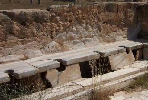 '위생의 제국' 고대 로마, 알고 보면 '기생충 천국'
