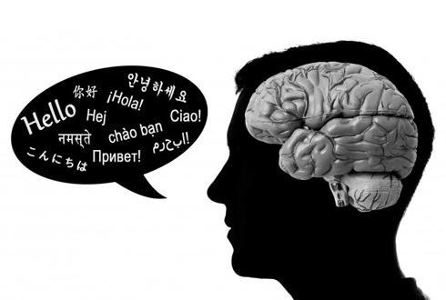 외국어 빨리 배우는 사람의 뇌, 뭐가 다른지 보니