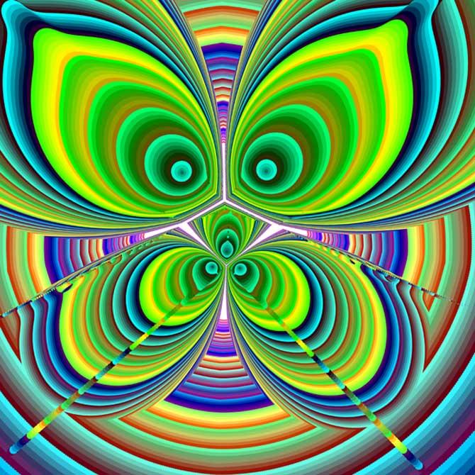 화려한 무늬와 색상으로 멋쟁이 티를 내는 나비의 실체도 다항식이랍니다. - 바흐만 카탄타리(미국 뉴저지주립대 컴퓨터과학과 교수) 제공