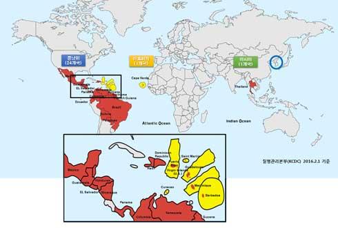 지카 바이러스에 대해 궁금한 12가지