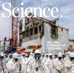 후쿠시마 원전 사고 5년, 그곳은 안전할까