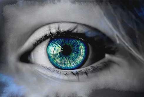 줄기세포로 만든 '인공 눈'으로 앞 못 보던 토끼, 눈 떴다
