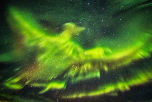 하늘을 나는 불사조~ 아이슬란드 오로라 피닉스