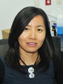 김진현 한국과학기술연구원(KIST) 뇌과학연구소 기능커넥토믹스연구단장. - KIST 제공