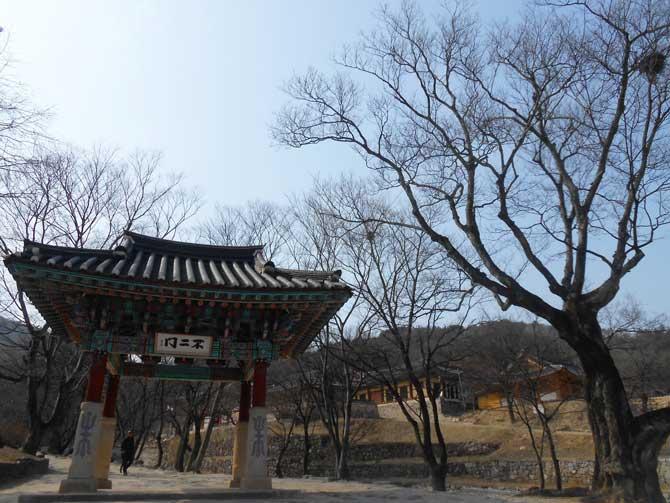 1920년에 건립된 불이문. 한국전쟁 때 유일하게 불타지 않은 건물이다. 그 옆으로 수령 약 500년된 팽나무가 함께 건봉사를 지키고 있다. - 고기은 제공