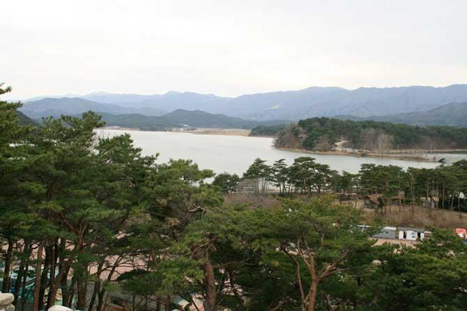 화진포의 성 전망대에서 내려다 본 울창한 송림에 둘러싸인 호수 - 고종환 제공
