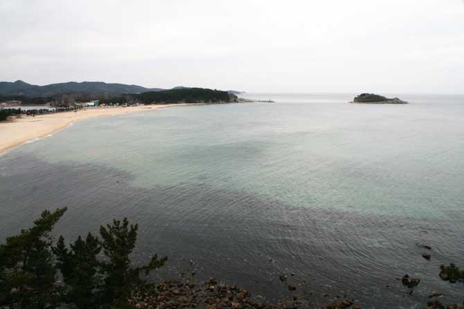 하얀 모래, 거북이 형상의 금구도, 눈부신 절경을 이루는 화진포 해수욕장 - 고종환 제공