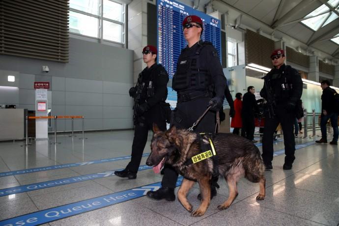22일 발생한 브뤼셀 테러 이후 인천공항 역시 폭발물 탐지견을 추가 투입하는 등 보안을 강화하고 있다. - 동아일보DB 제공