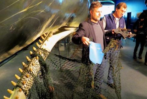 죽은 향유고래 속에서 발견된 쓰레기들