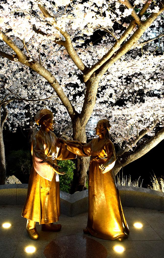 경포호가 가장 아름다울 때, 사랑하기 좋은 봄 - 고종환 제공