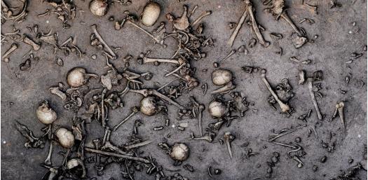 지금까지 전체 유적지의 10%인 450평방미터가 발굴됐는데 최소 130명의 유골이 나왔다. 사진은 이 가운데 12평방미터 구역으로 두개골 20개를 포함해 뼈 1428개가 출토됐다. - MVDHP/C. Hartl-Reiter 제공