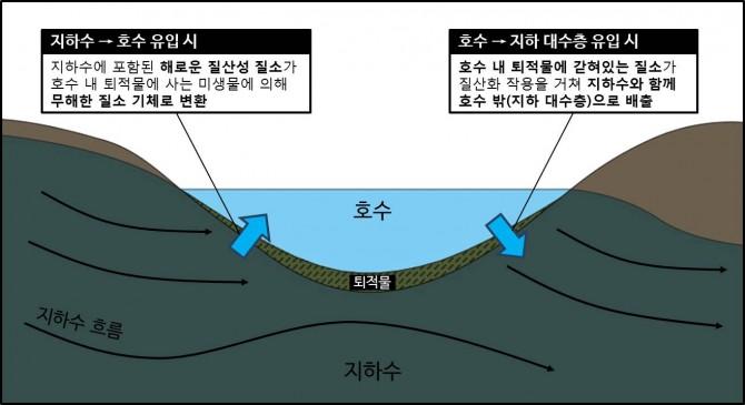 호수 지하수 순환 시 질소 정화 및 배출 개념설명도 - 한국지질자원연구원 제공