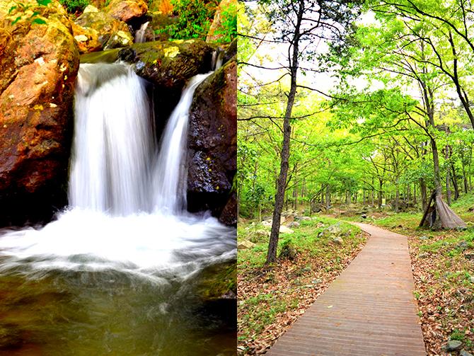 상쾌함을 전하는 계곡 폭포.(왼쪽) 자연의 소리를 들으며 함께 숲길을 걷는 시간.(오른쪽) - 고종환 제공