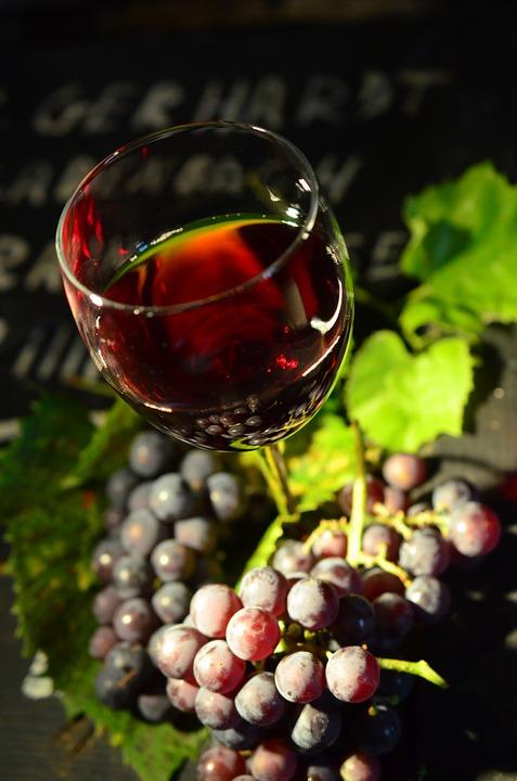 포도와 와인에는 폴리페놀 성분이 많아서 자외선에 손상된 피부를 건강하게 해 줍니다. - pixabay 제공