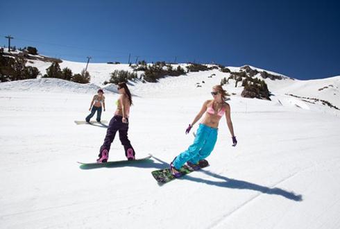 5월에 즐기는 스키 '화제'
