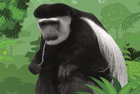 청산가리 가득한 대나무를 먹는 동물?