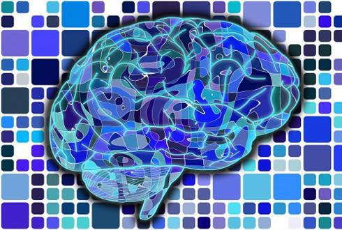 '치매 뇌 지도' 2023년까지 완성한다