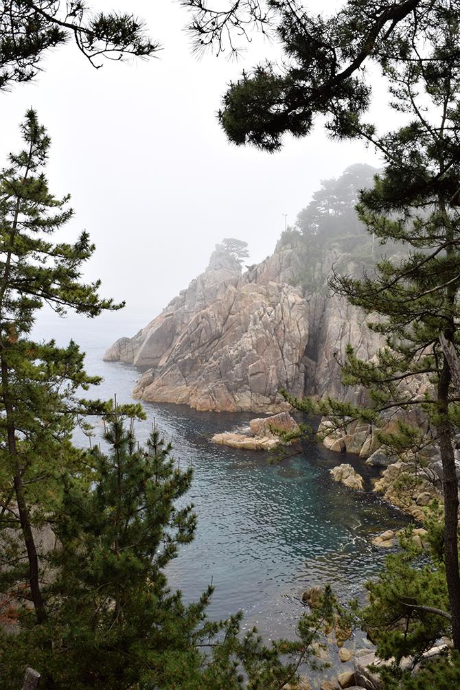울창한 송림, 기암괴석, 바다는 감탄사가 절로 나오는 하모니다. - 고종환 제공