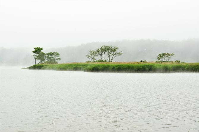 자욱히 안개가 피어오른 호수 풍경. - 고종환 제공