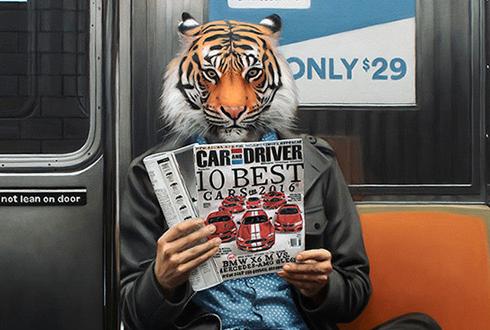 지하철 남자들을 동물로 표현하면?