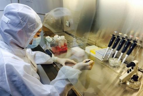 韓, 신약 개발 첨병 간세포 中에 수출 쾌거
