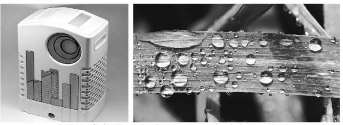 특수 나노 소자로 만든 고효율 제습기의 모습(왼쪽). 물방울이 맺히면 즉시 흘러내리는 벼 잎의 돌기구조(오른쪽)를 흉내 냈다. 물방을 제거가 빨라져 제습 효과가 뛰어나고 전기 사용량도 줄일 수 있다. - 한국기계연구원, 위키미디어 제공