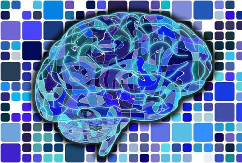 뇌 신경망 그대로 모방한 인공 시냅스 소자 나왔다
