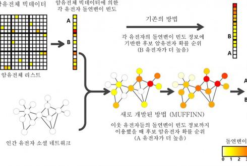 암 유전자 예측 시스템 '머핀(MUFFIN)' 개발