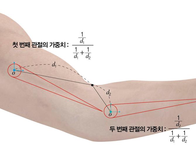 첫 번째 관절에서 d1만큼, 두 번째 관절에서 d2만큼 떨어진 피부 위의 한 점은 좀 더 가까운 두 번째 관절에 더 크게 영향을 받는다. - 수학동아 제공