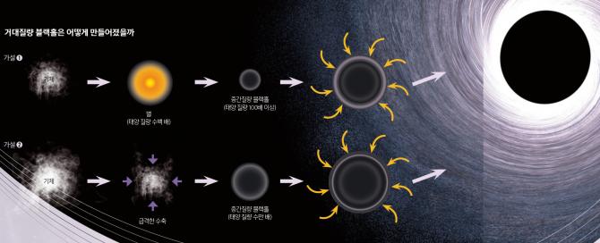 ➊초기 우주에 이미 태양 질량의 수백 배에 달하는 거대한 별이 있었고, 이 별이 수명을 다한 뒤 태양보다 100배 이상 무거운 중간질량 블랙홀이 돼 거대질량 블랙홀로 자랐다는 가설. ➋별 단계를 거치지 않고 거대한 기체 덩어리가 급격히 수축하면서 곧바로 태양 질량의 수만 배에 달하는 중간질량 블랙홀이 만들어진 뒤, 거대질량 블랙홀로 자랐다는 가설. - 과학동아 제공