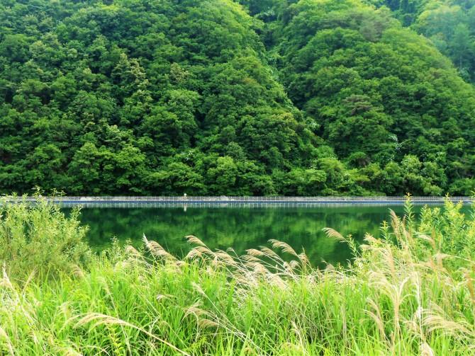 파로호는 화천군과 양구군에 걸쳐 있는 호수로 화천댐으로 인해 생긴 호수다. - 고기은 제공
