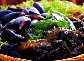나트륨 배출에 도움을 주는 음식 : 해조류 - 클립아트코리아 제공