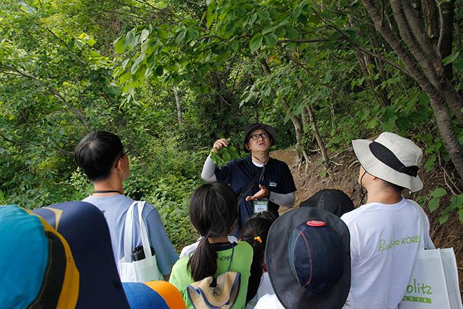 숲속 식물 탐사. - 김정 기자 ddanceleo@donga.com 제공