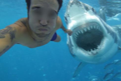 상어 공격 직전에 셀카 촬영? 해외 인터넷 괴담