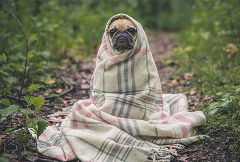여름에 오는 감기, 냉방병 예방법